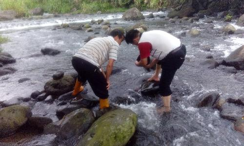 River Ecology in New Taipei